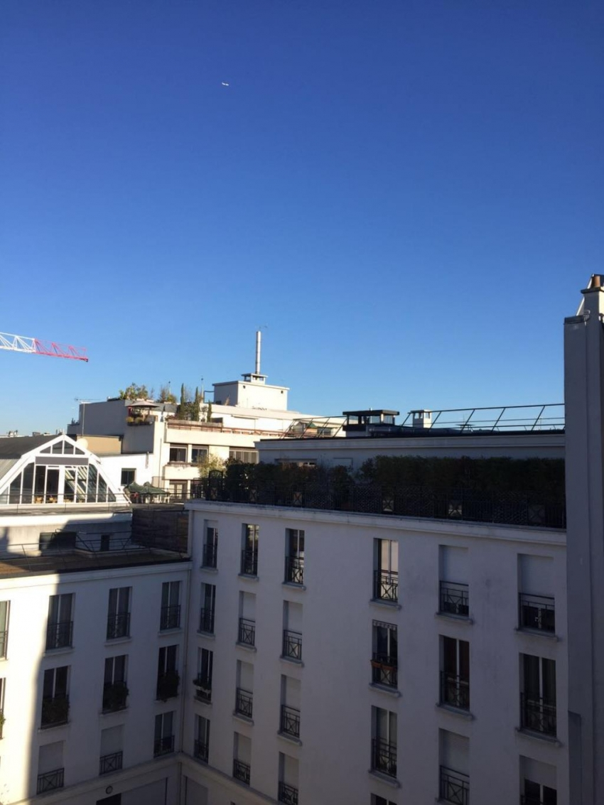 Appartement duplex paris 11e open immobilier for Duplex paris immobilier